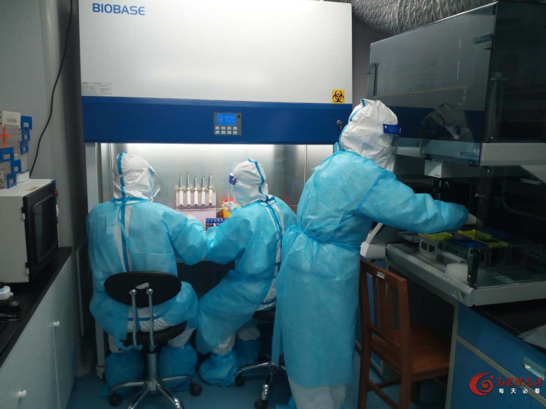 高密核酸检测41332人,结果公布!